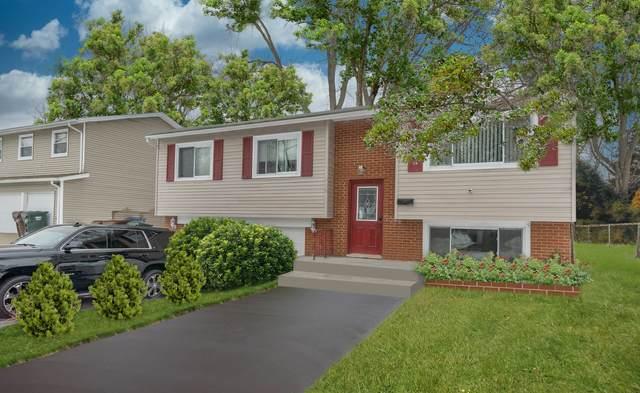 528 Circle Drive, University Park, IL 60484 (MLS #10994485) :: Jacqui Miller Homes