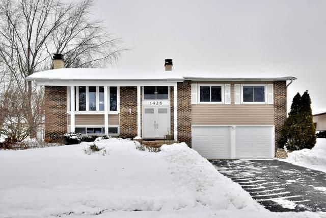 1428 Hodlmair Lane, Elk Grove Village, IL 60007 (MLS #10994726) :: The Dena Furlow Team - Keller Williams Realty