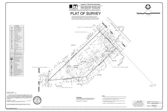 20054 Golden Oak Lane, Mokena, IL 60448 (MLS #10994836) :: The Dena Furlow Team - Keller Williams Realty