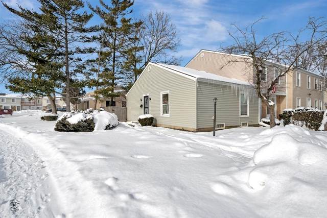 1191 Provincetown Drive, Country Club Hills, IL 60478 (MLS #10994995) :: The Spaniak Team