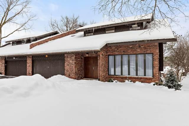 46 Lucas Drive, Palos Hills, IL 60465 (MLS #10995163) :: Jacqui Miller Homes