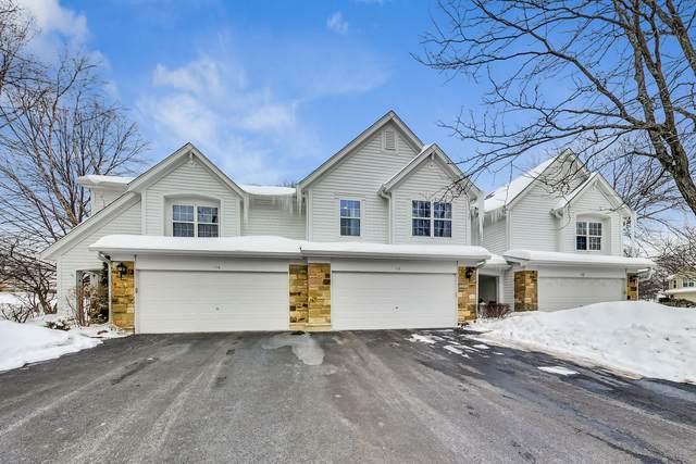 112 Crescent Lane, Schaumburg, IL 60193 (MLS #10995536) :: Jacqui Miller Homes