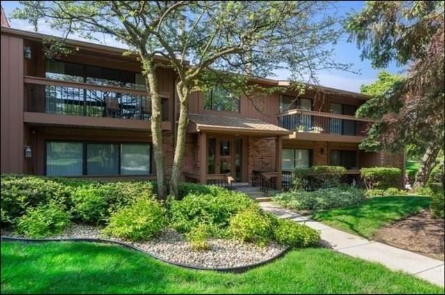 8078 S Garfield Avenue 9-2, Burr Ridge, IL 60527 (MLS #10995919) :: The Dena Furlow Team - Keller Williams Realty