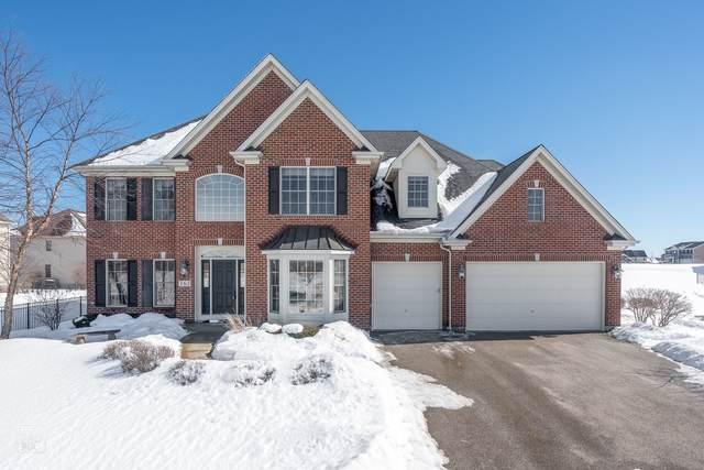 163 Winding Hill Drive, Elgin, IL 60124 (MLS #10996106) :: RE/MAX IMPACT