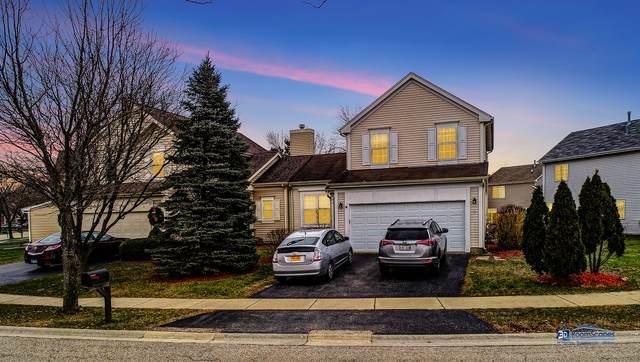 1065 Blackburn Drive, Grayslake, IL 60030 (MLS #10996373) :: The Dena Furlow Team - Keller Williams Realty