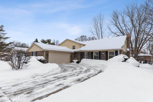 3019 N Windsor Drive, Arlington Heights, IL 60004 (MLS #10996407) :: John Lyons Real Estate