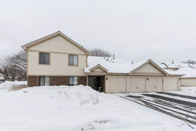 822 E Kings Row #4, Palatine, IL 60074 (MLS #10996793) :: RE/MAX IMPACT