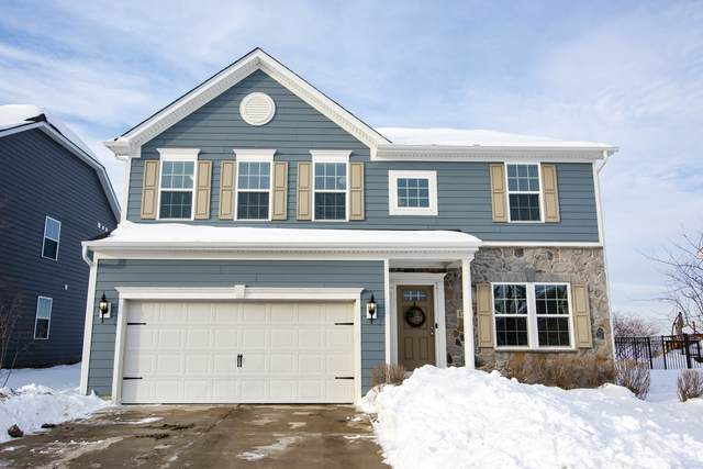 1714 Moran Drive, Shorewood, IL 60404 (MLS #10996812) :: The Dena Furlow Team - Keller Williams Realty