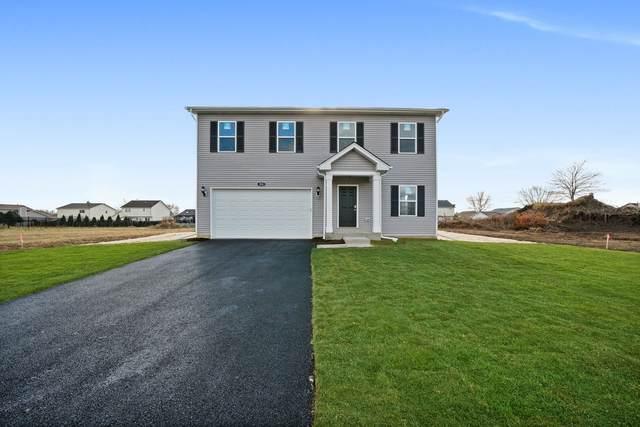 924 Bison Court, Oswego, IL 60543 (MLS #10996929) :: Helen Oliveri Real Estate