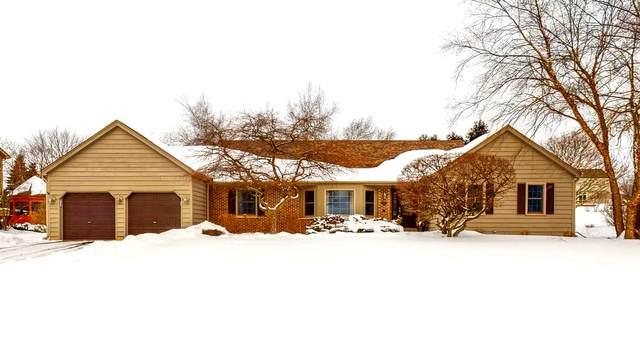 3590 Persimmon Drive, Algonquin, IL 60102 (MLS #10996941) :: Jacqui Miller Homes
