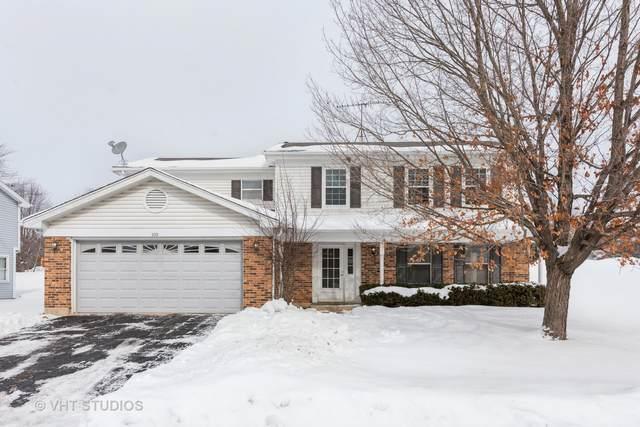 300 Country Lane, Algonquin, IL 60102 (MLS #10996957) :: Jacqui Miller Homes
