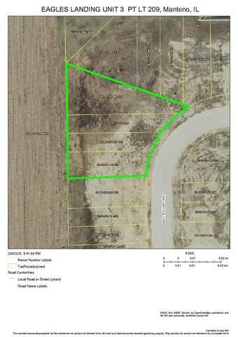 412-418 White Hawk Way, Manteno, IL 60950 (MLS #10997130) :: BN Homes Group