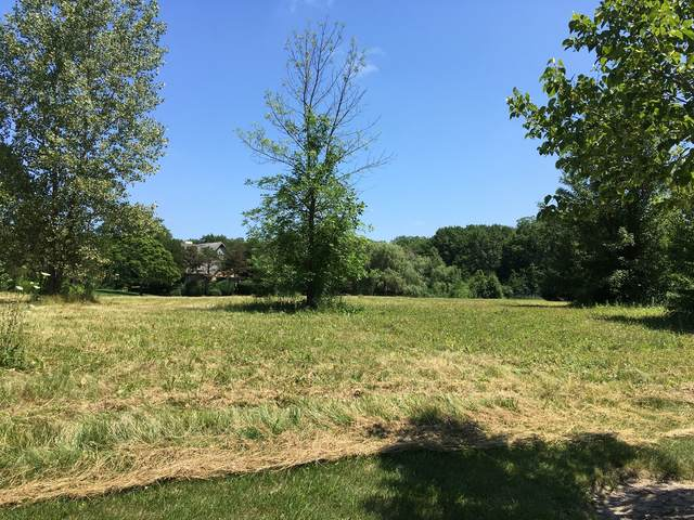 Lot  43 Kathryn Lane, Lake Forest, IL 60045 (MLS #10997594) :: Jacqui Miller Homes
