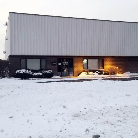 630 Schneider Drive, South Elgin, IL 60177 (MLS #10997678) :: The Dena Furlow Team - Keller Williams Realty