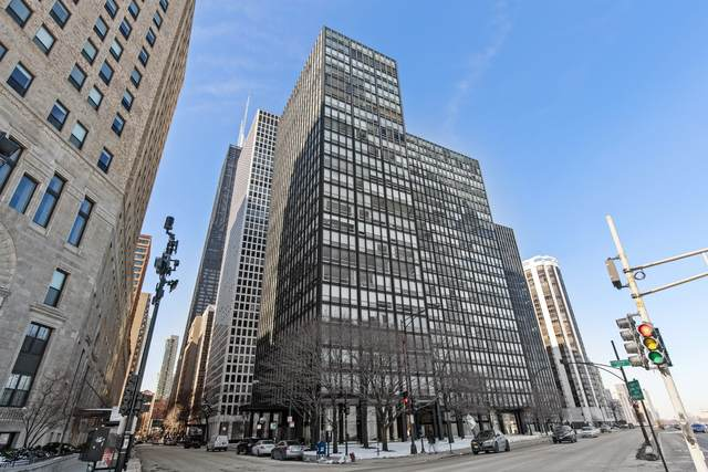 860 N Lake Shore Drive 5L, Chicago, IL 60611 (MLS #10998210) :: Littlefield Group