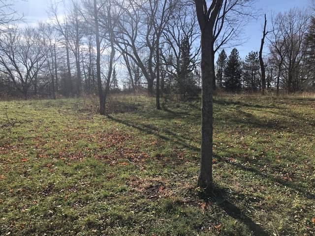 Lot 10 Abbey Woods Drive, Barrington Hills, IL 60010 (MLS #10998671) :: BN Homes Group