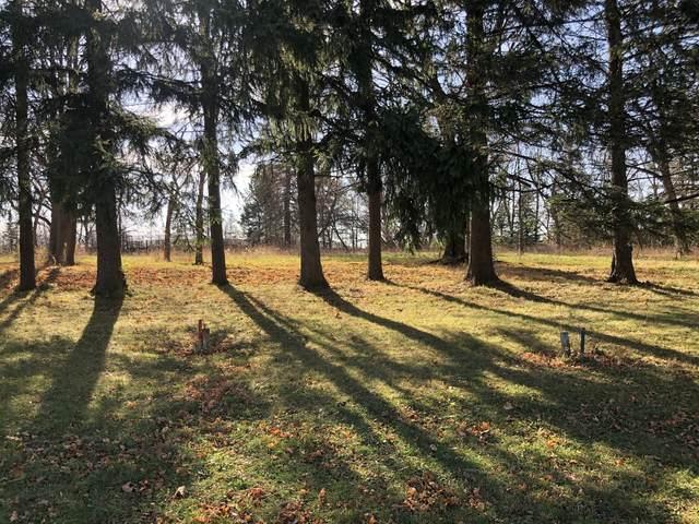 Lot 9 Abbey Woods Drive, Barrington Hills, IL 60010 (MLS #10998672) :: BN Homes Group