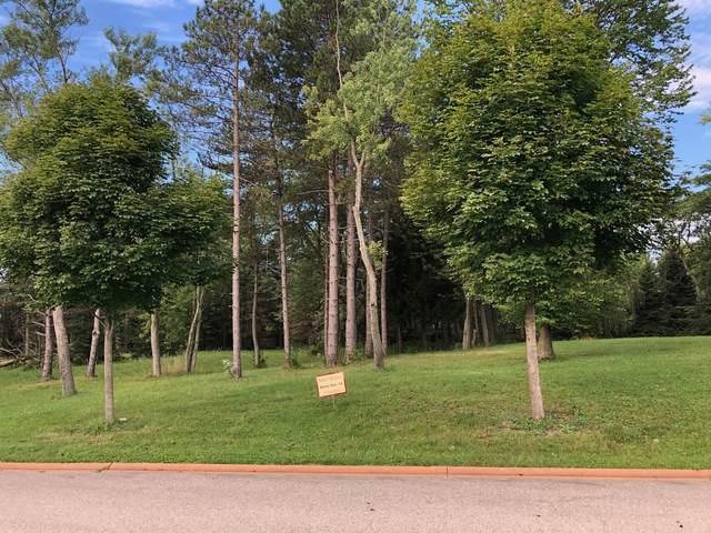 Lot 14 Abbey Woods Drive, Barrington Hills, IL 60010 (MLS #10998680) :: BN Homes Group