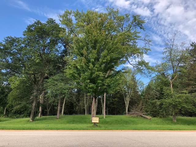 Lot 13 Abbey Woods Drive, Barrington Hills, IL 60010 (MLS #10998681) :: BN Homes Group