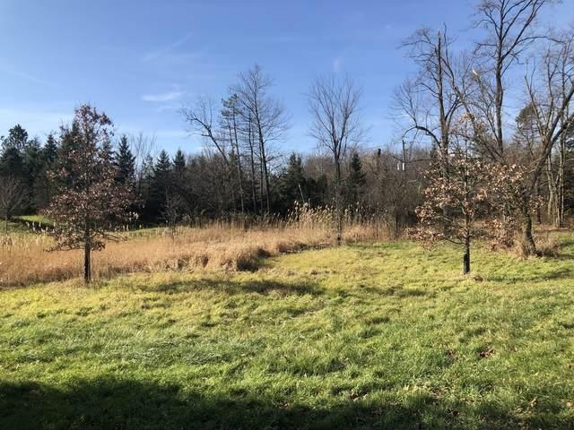 Lot 12 Abbey Woods Drive, Barrington Hills, IL 60010 (MLS #10998682) :: BN Homes Group