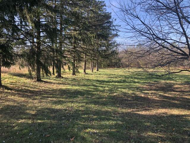 Lot 11 Abbey Woods Drive, Barrington Hills, IL 60010 (MLS #10998683) :: BN Homes Group