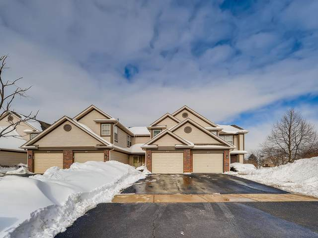 1633 Orchard Avenue, Schaumburg, IL 60193 (MLS #10998777) :: The Spaniak Team