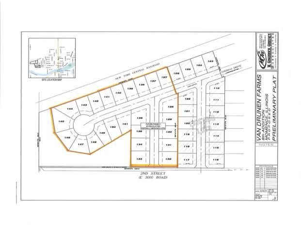 Lots 127-151 E 2nd Street, Momence, IL 60954 (MLS #10999022) :: The Dena Furlow Team - Keller Williams Realty