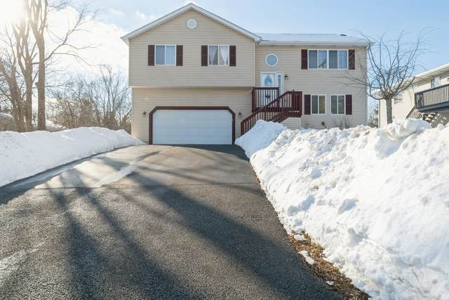 43144 N Lake Avenue, Antioch, IL 60002 (MLS #10999066) :: The Dena Furlow Team - Keller Williams Realty