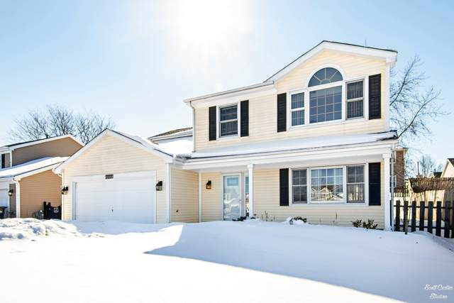 717 Greenmeadow Court, Crystal Lake, IL 60014 (MLS #10999957) :: Touchstone Group