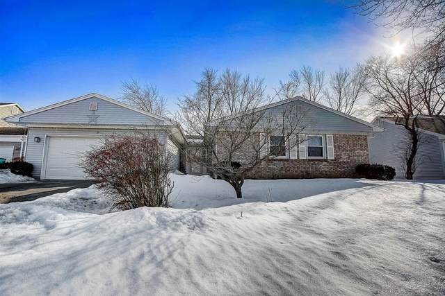 3 Amherst Court, Buffalo Grove, IL 60089 (MLS #11000689) :: Ani Real Estate