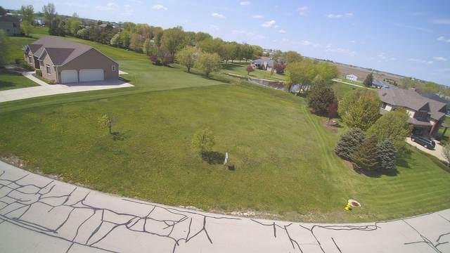 2807 Ninovan Lane, Minooka, IL 60447 (MLS #11000741) :: BN Homes Group