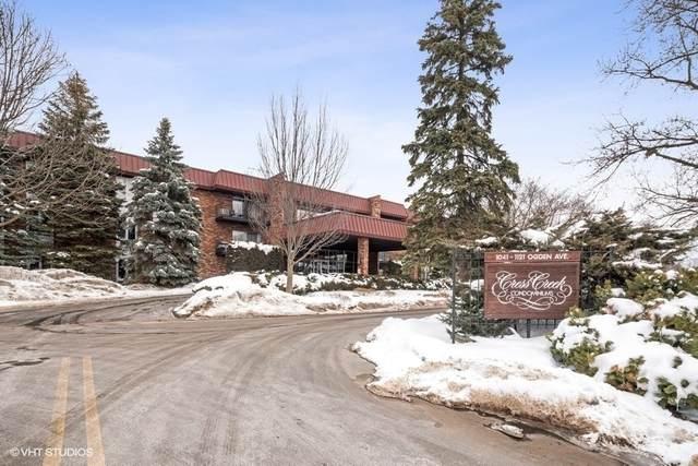 1049 W Ogden Avenue #317, Naperville, IL 60563 (MLS #11001126) :: Jacqui Miller Homes