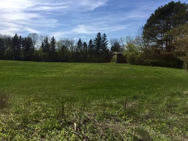 8401 S County Line Road, Burr Ridge, IL 60527 (MLS #11001604) :: The Dena Furlow Team - Keller Williams Realty