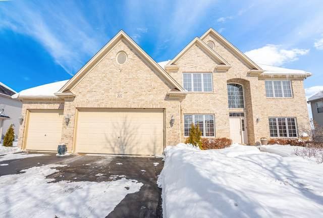 202 Holly Lane, Oswego, IL 60543 (MLS #11002347) :: Jacqui Miller Homes
