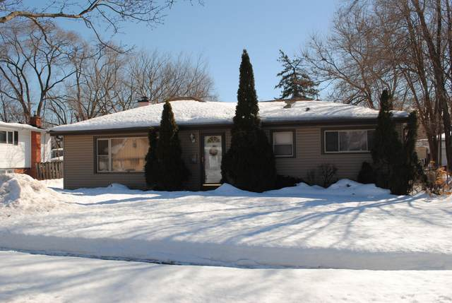 2035 Halsey Drive, Des Plaines, IL 60018 (MLS #11002660) :: The Dena Furlow Team - Keller Williams Realty