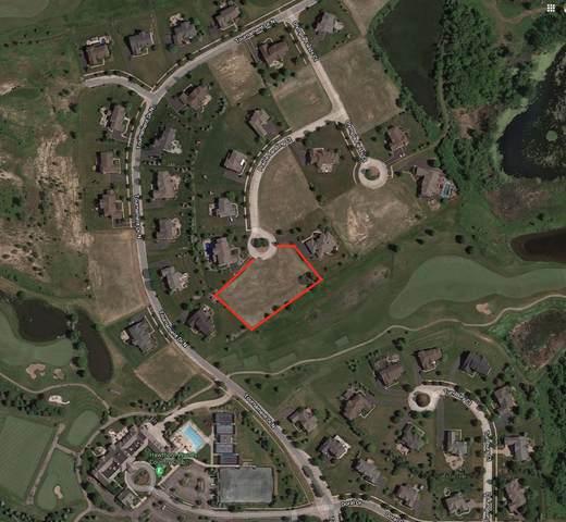 9 Prairie Landings Court, Hawthorn Woods, IL 60047 (MLS #11002790) :: Helen Oliveri Real Estate