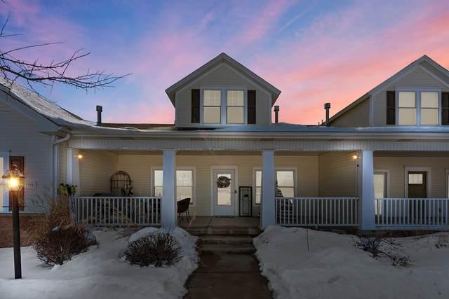 1311 Sioux Turn, Kankakee, IL 60901 (MLS #11003271) :: Ani Real Estate