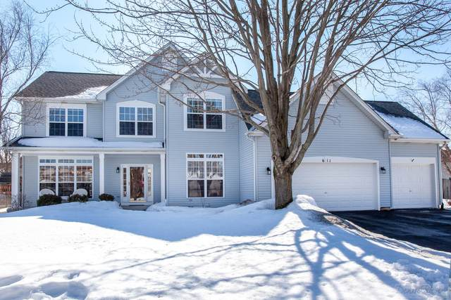 611 Highview Court, Oswego, IL 60543 (MLS #11003370) :: The Dena Furlow Team - Keller Williams Realty