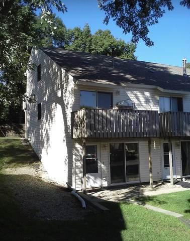 77 Maude Avenue E, Fox Lake, IL 60020 (MLS #11003434) :: Littlefield Group