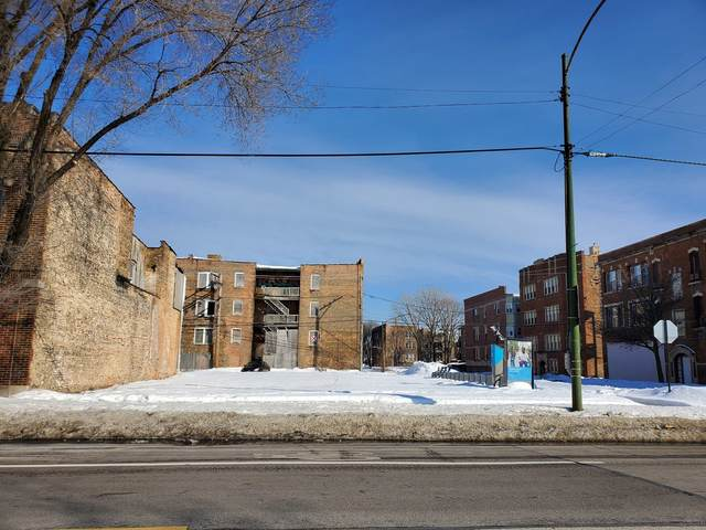 7257 S Halsted Street, Chicago, IL 60621 (MLS #11003734) :: The Dena Furlow Team - Keller Williams Realty
