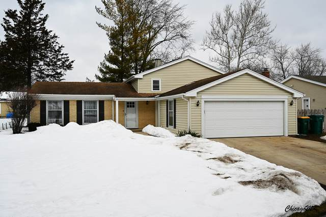 800 Saratoga Lane, Buffalo Grove, IL 60089 (MLS #11003918) :: The Dena Furlow Team - Keller Williams Realty