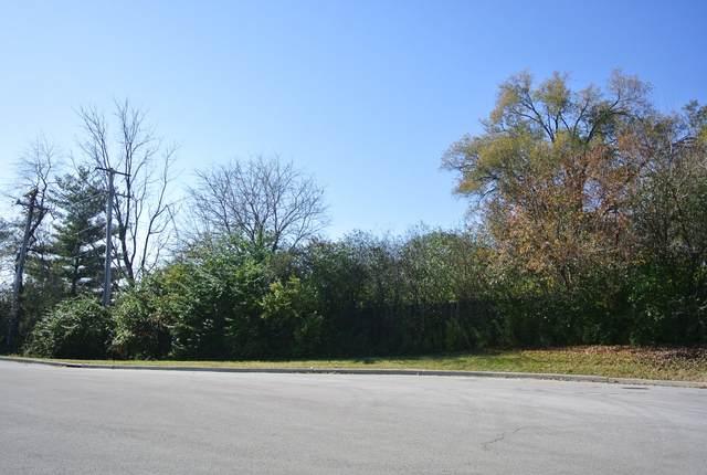 3S729 LOT 24 West Avenue, Warrenville, IL 60555 (MLS #11004154) :: The Dena Furlow Team - Keller Williams Realty