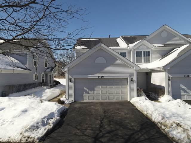 1420 Wesley Court, Mundelein, IL 60060 (MLS #11004196) :: Helen Oliveri Real Estate