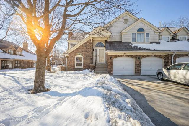 255 Willow Parkway, Buffalo Grove, IL 60089 (MLS #11004364) :: Ani Real Estate