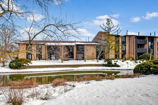 6100 Knoll Valley Drive #104, Willowbrook, IL 60527 (MLS #11004384) :: The Spaniak Team