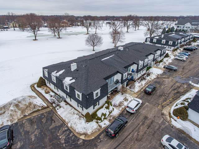 1115 Royal Saint George Drive #205, Naperville, IL 60563 (MLS #11004470) :: Jacqui Miller Homes