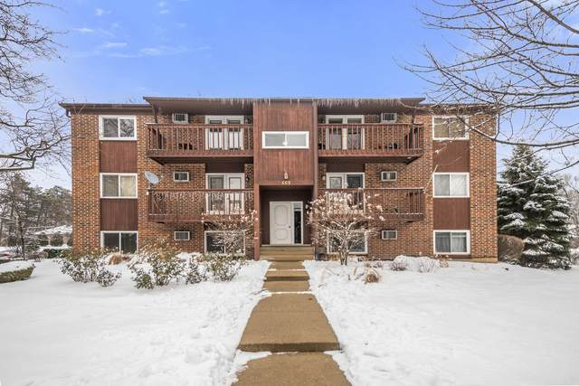 669 Daisy Lane #104, Roselle, IL 60172 (MLS #11004635) :: Touchstone Group