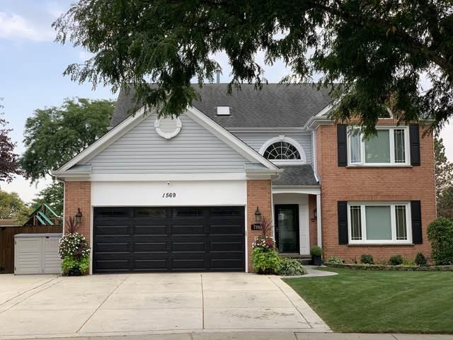 1569 E Castle Court, Palatine, IL 60074 (MLS #11004645) :: Jacqui Miller Homes