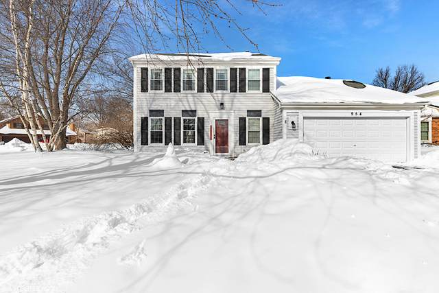 954 Thomas Boulevard, Mundelein, IL 60060 (MLS #11004781) :: The Dena Furlow Team - Keller Williams Realty