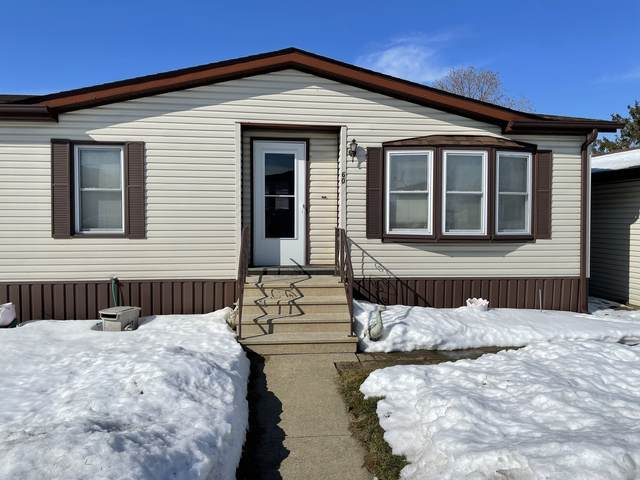 60 Maple Ridge Park, Manteno, IL 60950 (MLS #11004958) :: Ani Real Estate